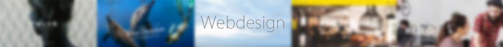 Webdesign 2014